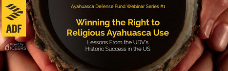 Free webinar! Winning the Right to Religious Ayahuasca Use:  Lessons From the UDV's Historic Success in the US.  | Ayahuasca News | Scoop.it