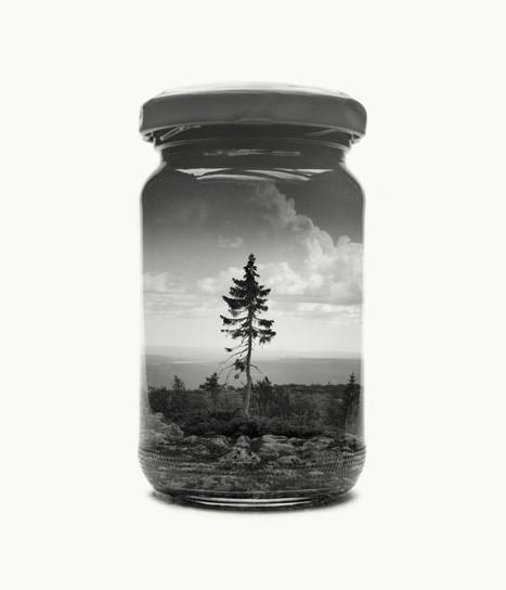 #Photographie : Deux expositions pour mettre les paysages finlandais en bocaux | Jaclen 's photographie | Scoop.it