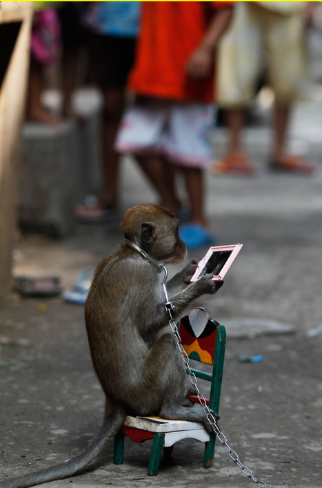 """Indonesia: """"Monkey Mask Show"""" (big photo gallery) - Boing Boing 