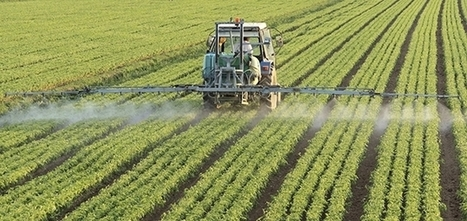 USDA Transitional Certification Program Makes It Easier for Farmers to Go Organic | Sustainable Brands | The EcoPlum Daily | Scoop.it