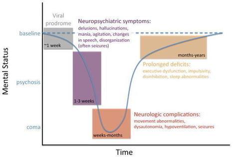 Nmda rezeptor enzephalitis