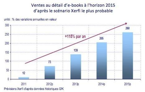 Prévision : Croissance du livre numérique de 115 % en France | Echos des Labs | Scoop.it