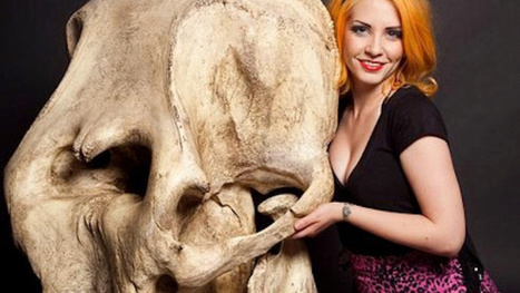 Sexy skeleton models are easily the weirdest thing you'll see today | Strange days indeed... | Scoop.it