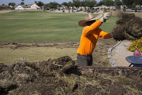 Is Phoenix area's long love affair with grass waning? | Arizona Republic | CALS in the News | Scoop.it