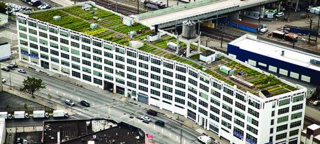 Brooklyn Grange | Green Architecture | Scoop.it