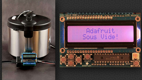 Turn Your Rice Cooker Into an Arduino-Powered, DIY Sous Vide Machine - Lifehacker | Raspberry Pi | Scoop.it