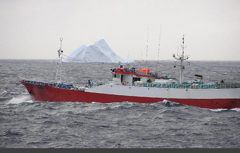Open Seas - The Arctic is the Mediterranean of the 21st century. | Sustain Our Earth | Scoop.it