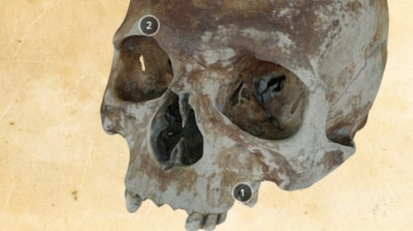 Mary Rose shipwreck skulls go online in 3D - BBC News | Wonderful World of History | Scoop.it
