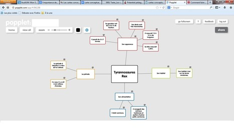 La pertinence des cartes conceptuelles en milieu scolaire | Penser, réfléchir, planifier avec la carte heuristique, les cartes conceptuelles | Scoop.it
