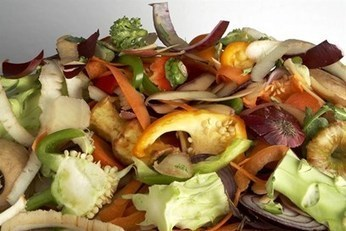 An increase of just one day on product life across a range of foods could prevent 250,000 tonnes of food waste each year, claims WRAP report | Recycling News Channel | OrganicStream.org | Scoop.it