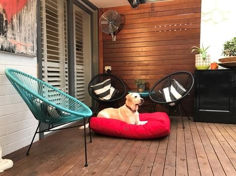 Astonishing Stylish Snoozas Dog Beds In Australia Machost Co Dining Chair Design Ideas Machostcouk