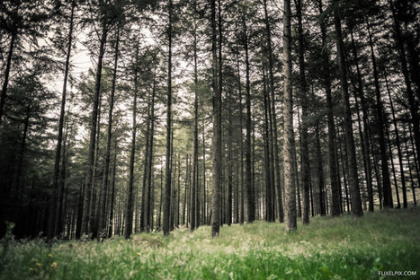 Is the Fujifilm XF 16mm f1.4 the perfect landscape lens? | Fujifilm X | Scoop.it