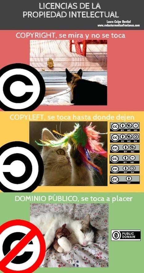 ¿Copyright, Copyleft o Dominio Público? ¿Conoces la licencia de las imágenes que encuentras en internet? | Las TIC en el aula de ELE | Scoop.it