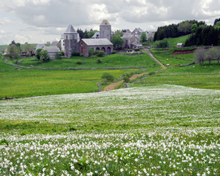 Quand l'Aubrac sera Parc naturel régional   OT et régions touristiques de France   Scoop.it