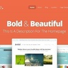 Striking WordPress Themes and Plugins