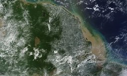 Huge coral reef discovered at Amazon river mouth | Geography | Scoop.it