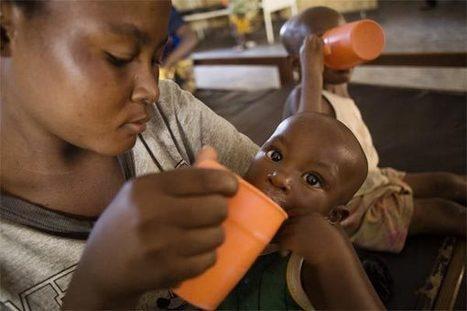 Ending Hunger | Malnutrition no more | Plant Gene Seeker -PGS | Scoop.it