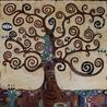 The Spiral Oak