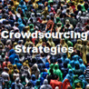 Crowdsourcing Strategies