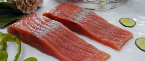 Closed Containment Aquaculture Products | Aquaculture Products & Marketing Network | Scoop.it