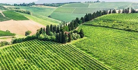 La huella humana ha afectado el 75% de la superficie terrestre | Agroindustria Sostenible | Scoop.it