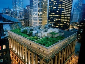 Rooftop Garden Picture -- Chicago Photo -- National Geographic Photo of the Day | Agriculture and the Natural World | Scoop.it