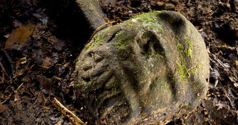 "Curse of the ""Lost City of the Monkey God""? 