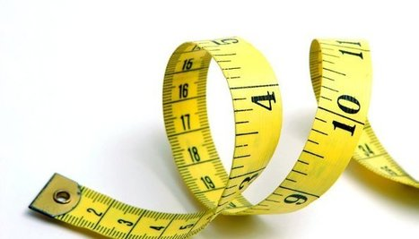Measuring Organizational Agility   Thriving or Dying in the Project Age   Scoop.it