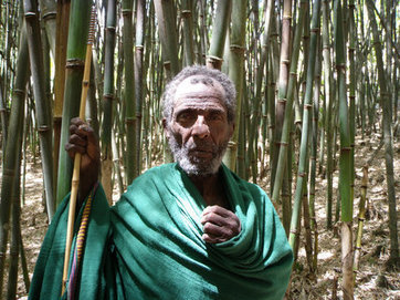 In Africa's Vanishing Forests, the Benefits of Bamboo | Zero Footprint | Scoop.it