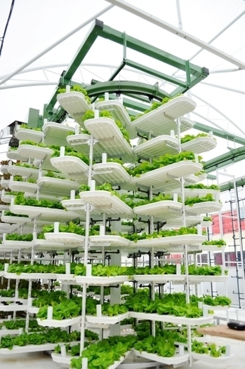 High-tech greenhouse planned for downtown Vancouver parkade rooftop | New Civilizations | Scoop.it