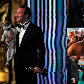 The Dog from the Oscars Also Works for Nintendo | Responsible Pet Parenting | Scoop.it
