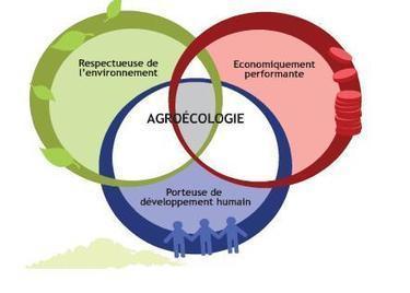 Togo: Un nouveau projet pour la transition agro-écologique | Questions de développement ... | Scoop.it