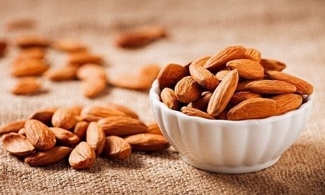 Ditching meat for 'plant protein' leads to a lower risk of death | Vegetarian and Vegan | Scoop.it