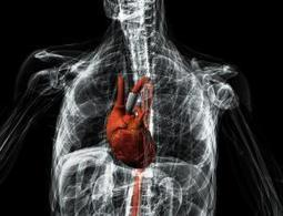 Une pompe imprimée en 3D permet à un coeur malade de battre à nouveau | Remembering tomorrow | Scoop.it