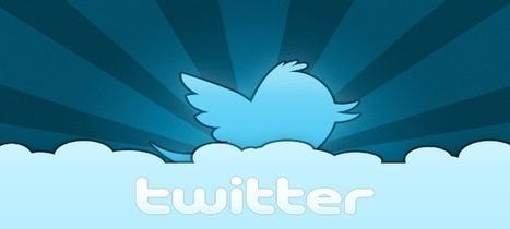 Comment faire du marketing sur Twitter en 2013 ? | Entrepreneurs du Web | Scoop.it