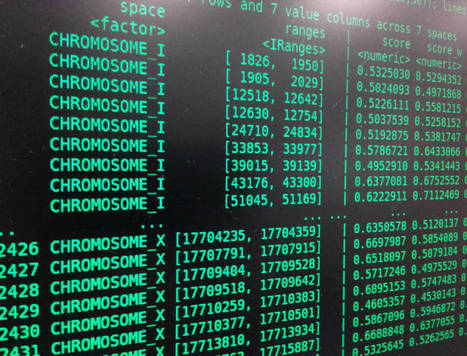 La startup española que protege tus genes en la nube desde 650 euros | Social Media, TIC y Salud | Scoop.it