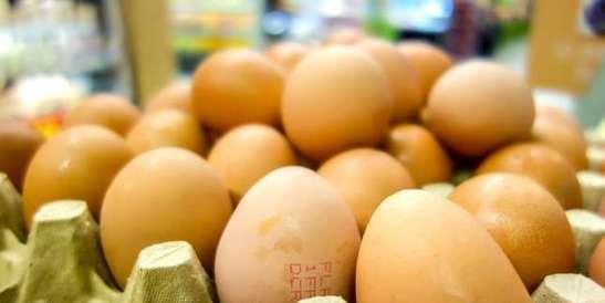 La fraude aux œufs contaminés s'étend