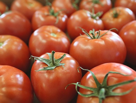 Foods that can save your skin | substainable technologies | Scoop.it
