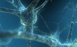 Pourquoi l'efficacité d'antidouleurs diminue avec le temps ? - Techno-science.net | santé et protection sociale | Scoop.it