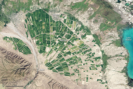Photography - Alluvial Fan in Kazakhstan | geography and anthropology | Scoop.it