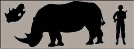 Protecting Rangers, Protecting Rhinoceroses | DuPont ASEAN | Scoop.it