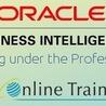 Sr Online Training