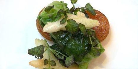 Astuce de chef: cuire un poisson en papillote de laitue | MILLESIMES 62 : blog de Sandrine et Stéphane SAVORGNAN | Scoop.it
