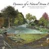 Lorraine's Riverine Environments Stage 5 Option