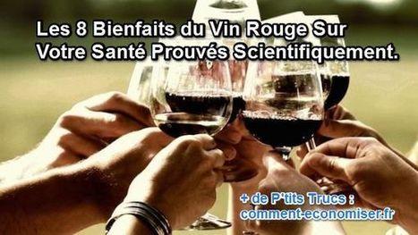 Les 8 Bienfaits du Vin Rouge Sur Votre Santé Prouvés Scientifiquement. | Oenotourisme en Entre-deux-Mers | Scoop.it
