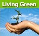 Green Wiki   HomeSustainability   Scoop.it