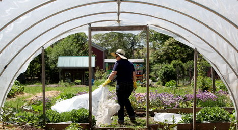 How to Build a Hoop House | Gardening Life | Scoop.it