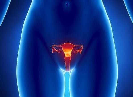 Vinculan la mutación del gen BRCA1 a problemas de fertilidad en la mujer | Marketing Farmacéutico | Scoop.it