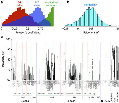 Innate and adaptive immune traits are differentially affected by genetic and environmental factors | Immunology | Scoop.it