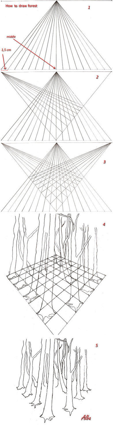 How to draw forest in perspective | Drawing References and Resources | Scoop.it